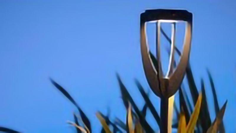 Torche Tulip Solaire