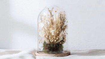 Cloche de fleurs séchées crème
