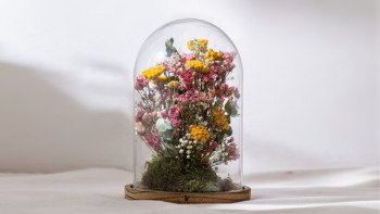 Cloche de fleurs séchées...