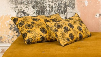 MIMOSA COUSSIN MOUTARDE...