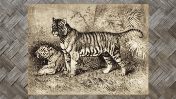 """Tenture Murale """"TIGRES..."""