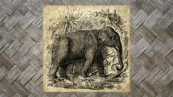 "Tenture Murale ""ELEPHANT..."